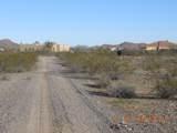 15339 Desert Vista Trail - Photo 16