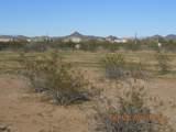 15339 Desert Vista Trail - Photo 6
