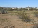 15339 Desert Vista Trail - Photo 7