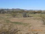 15339 Desert Vista Trail - Photo 8