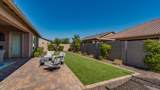 3500 Desert Broom Drive - Photo 47