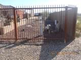22317 Calle De Los Flores Drive - Photo 2