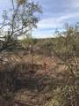 46X00 Abbott Road - Photo 6