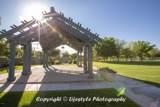 14363 Windrose Drive - Photo 116