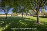 14363 Windrose Drive - Photo 118