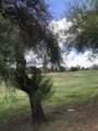 22261 Via Del Palo - Photo 47