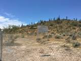 0xxx Columbia Mine Trl North Road - Photo 18