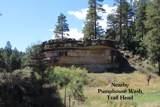 3502 Ancient Trail - Photo 31