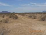 54425 Ocotillo Road - Photo 4