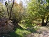 435 Bonito Ranch Loop - Photo 11
