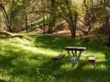 435 Bonito Ranch Loop - Photo 14