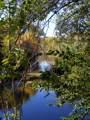 435 Bonito Ranch Loop - Photo 7