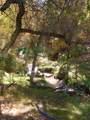 435 Bonito Ranch Loop - Photo 8