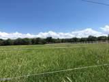 260 Bonito Ranch Loop - Photo 4