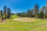 2016 Columbine Circle - Photo 70