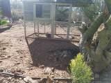 1039 Saguaro Drive - Photo 33