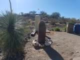 1039 Saguaro Drive - Photo 37