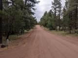4304 Gold Dust Trail - Photo 19