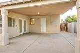 3810 Golden Lane - Photo 47