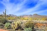 14340 Desert Tortoise Trail - Photo 10