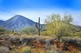 14340 Desert Tortoise Trail - Photo 11