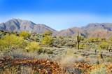 14340 Desert Tortoise Trail - Photo 8