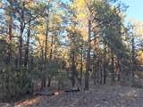 2941 Antelope Trail - Photo 2