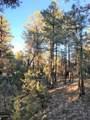 2941 Antelope Trail - Photo 3