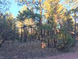 2941 Antelope Trail - Photo 5