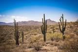 13222 El Pueblo Boulevard - Photo 35