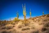 13222 El Pueblo Boulevard - Photo 41