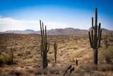 13218 El Pueblo Boulevard - Photo 20