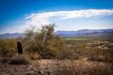 13218 El Pueblo Boulevard - Photo 22