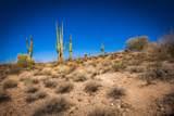 13217 El Pueblo Boulevard - Photo 22