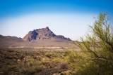 13223 El Pueblo Boulevard - Photo 6