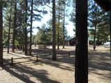 2727 High Pine Loop - Photo 2