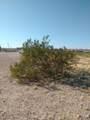 XX Tether Trail - Photo 6