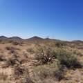 0 Horseshoe Trail - Photo 6