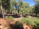 6441 Ruin Hill Loop - Photo 5