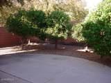 2146 San Carlos Place - Photo 44