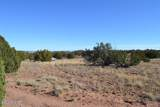 3858 Hidden Ranch Road - Photo 11