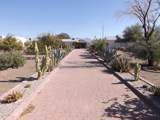 453 Ocotillo Drive - Photo 10