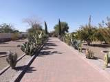 453 Ocotillo Drive - Photo 16