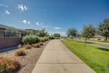 36190 Desert Tea Drive - Photo 53