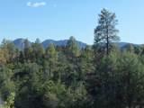 3102 Monument Peak - Photo 1