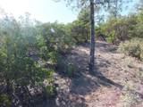 3102 Monument Peak - Photo 11