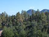 3102 Monument Peak - Photo 4