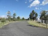 6762 Lariat Lane - Photo 44