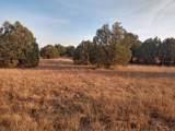918 Walnut Creek Road - Photo 4