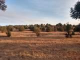 918 Walnut Creek Road - Photo 5